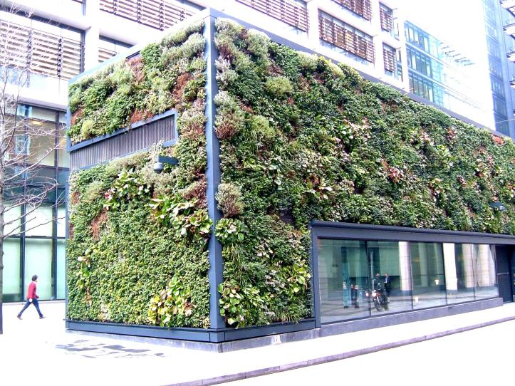 Vertical gardens in Pemberton Row