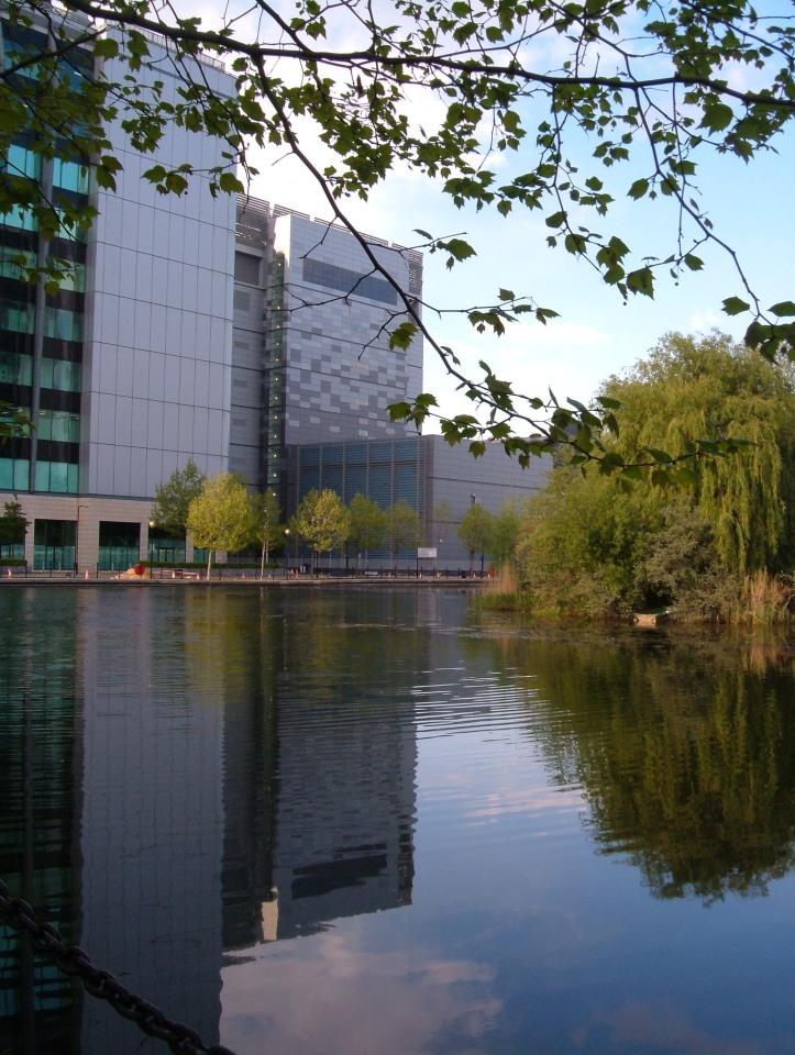 'Docks' adjacent to Saffron Avenue
