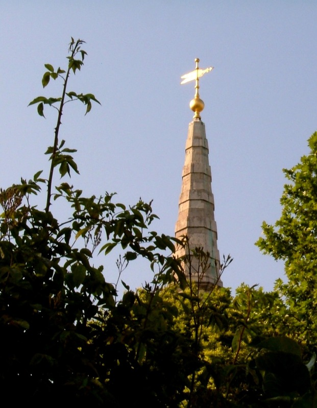 The spire of St Giles in the Fields from the Phoenix Gardens