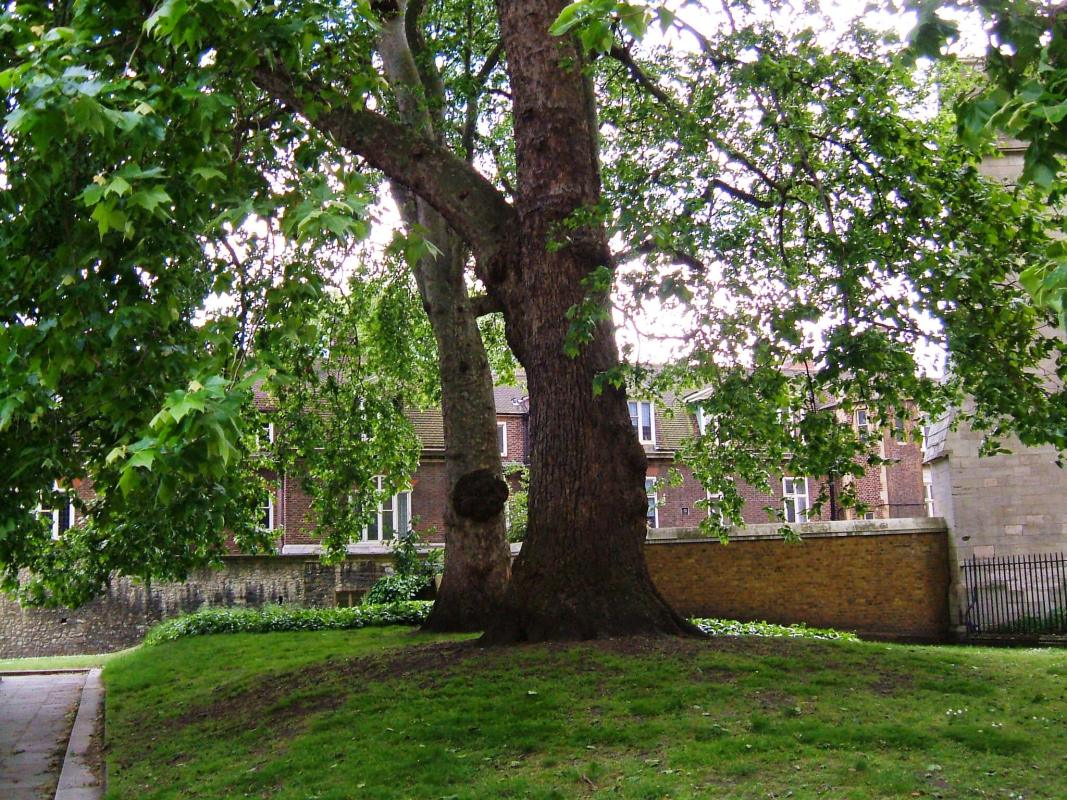 The old wall between the Jewel Tower and the Henry VII Chapel
