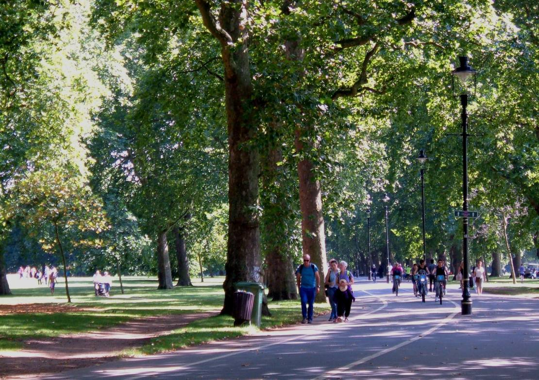 The shady walk alongside Park Lane, in Hyde Park