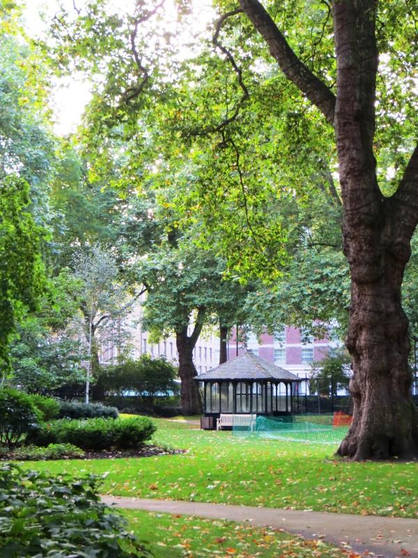 Portman Square garden