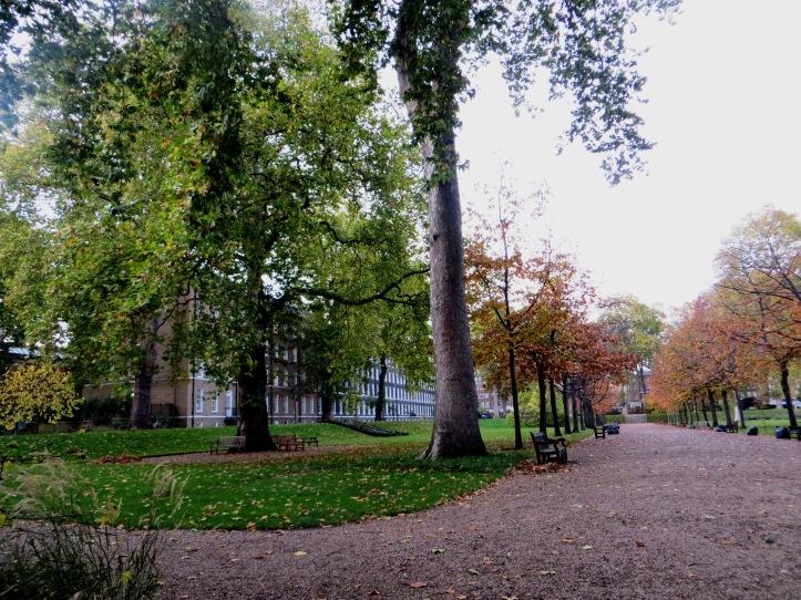 The Gardens, Gray's Inn