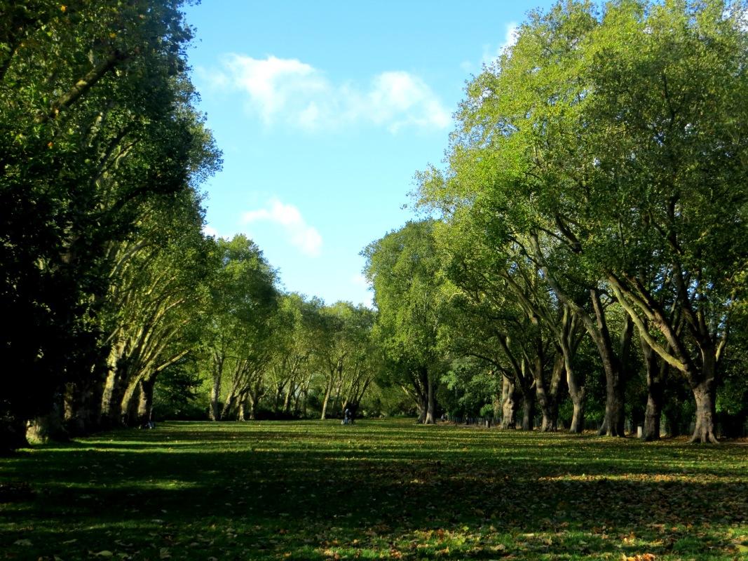 Bishops' Park, Fulham Palace