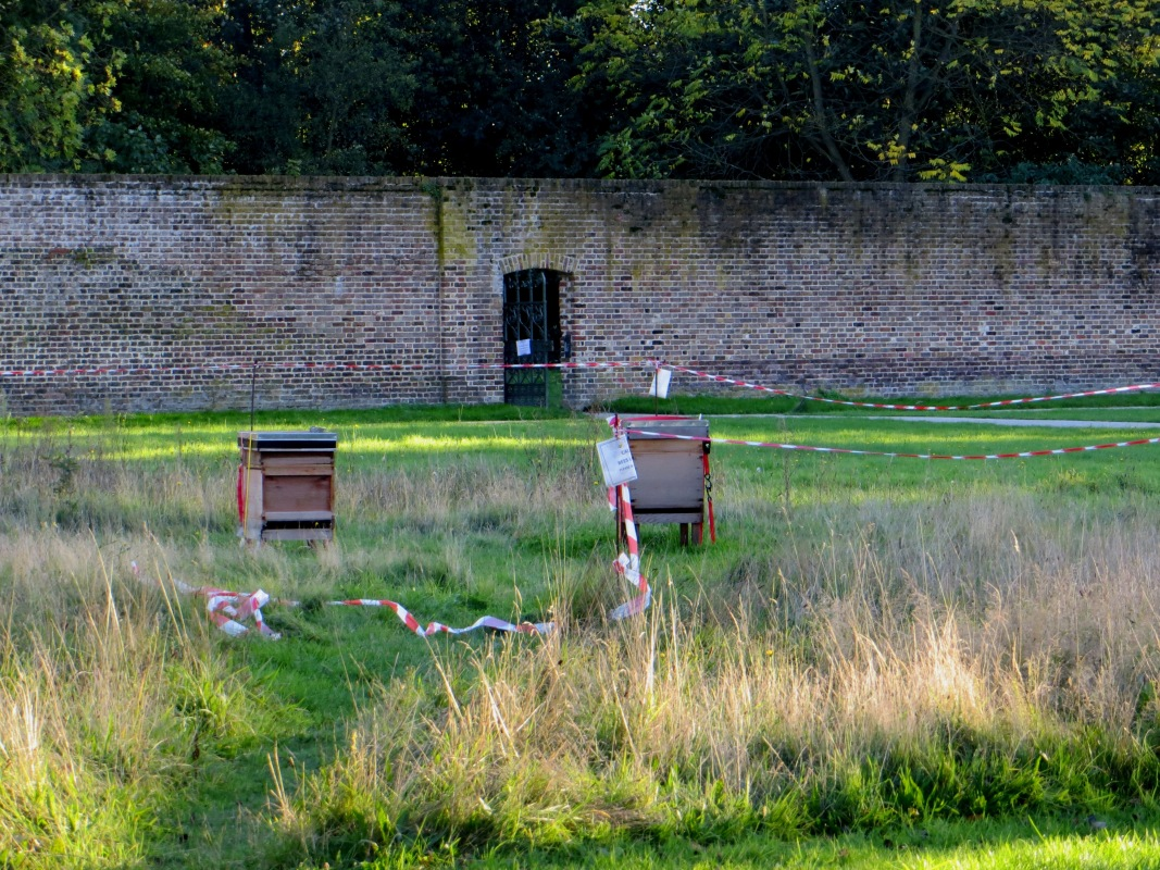 The bee hives in the Walled Garden