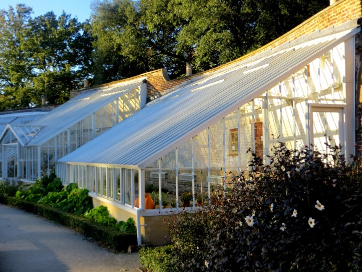 The newly restored greenhouses in the Walled Garden
