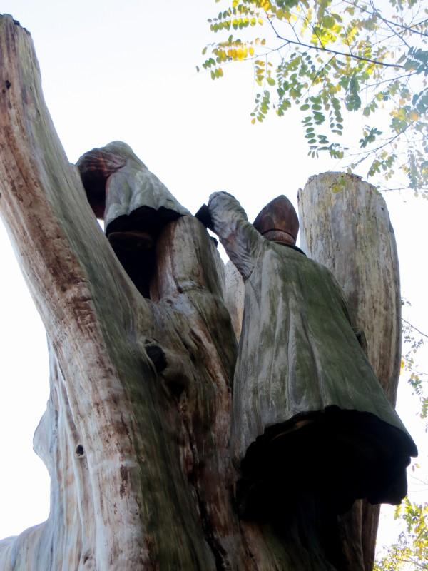 The Bishops' Tree
