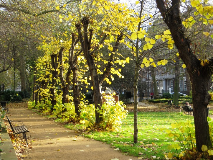 The gardens, Gordon Square