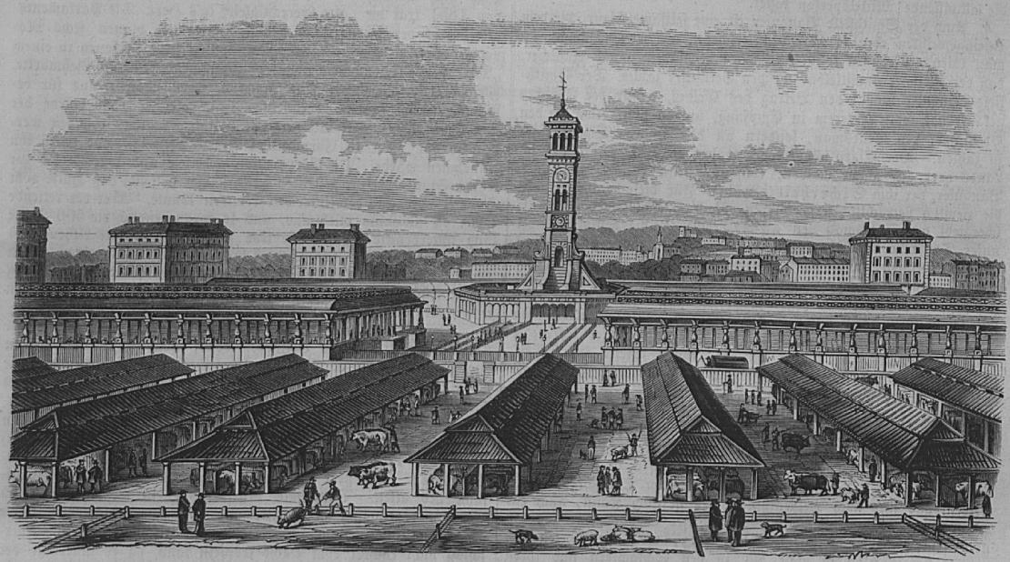 Caledonian Cattle Market, Die Gartenlaube (1855) Wikipedia