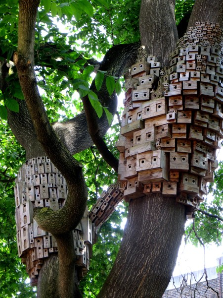 Bird Boxes in Duncan Terrace Gardens