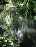 New River in Canonbury Grove