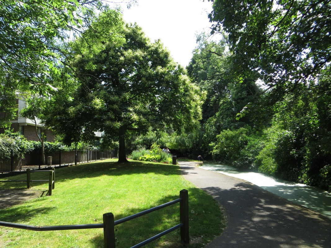 At St Paul's Road, looking back at Canonbury Grove