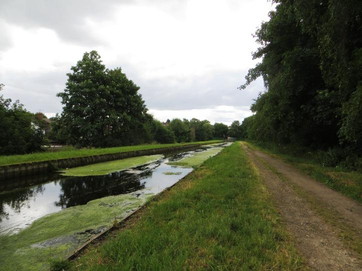 Behind Wightman Road, up to Hampden Road