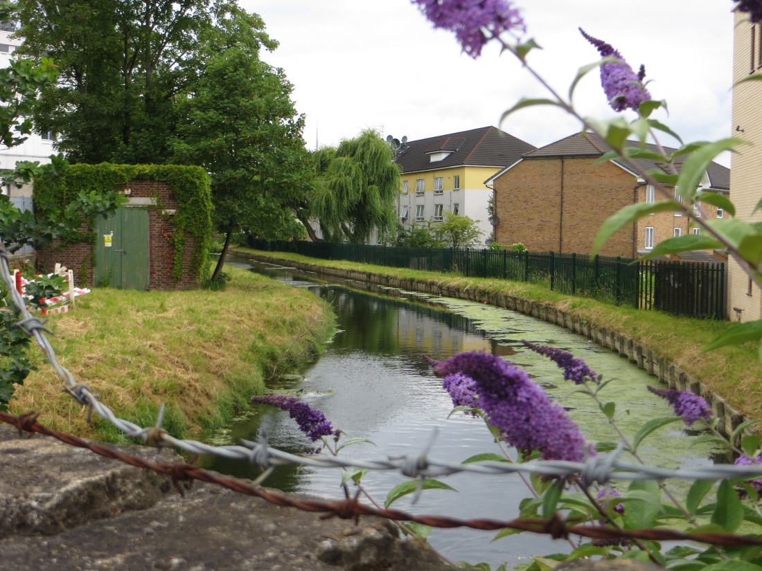New River hidden behind the buildings, Hampden Road to Hornsey Bridge