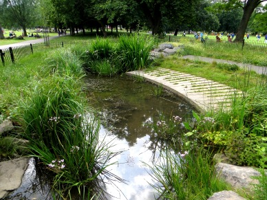 New River goes into culvert in Clissold Park