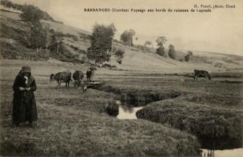 Barsanges