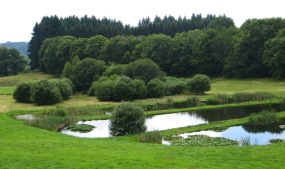 Landscape with water at the Museum of President Jacques Chirac