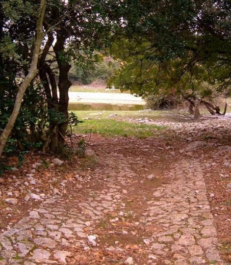 Lavoigne near Cambous