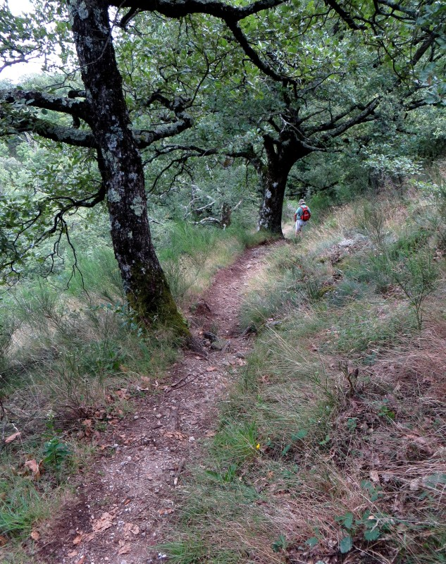 Towards the Col de Mercou