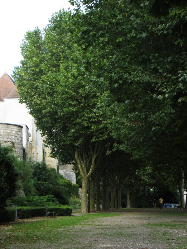 The boules pitch next to the walls and La Tour Blanches