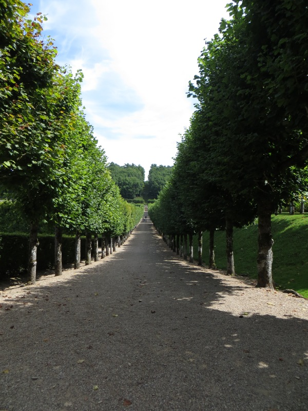 The Linden Tree Avenue
