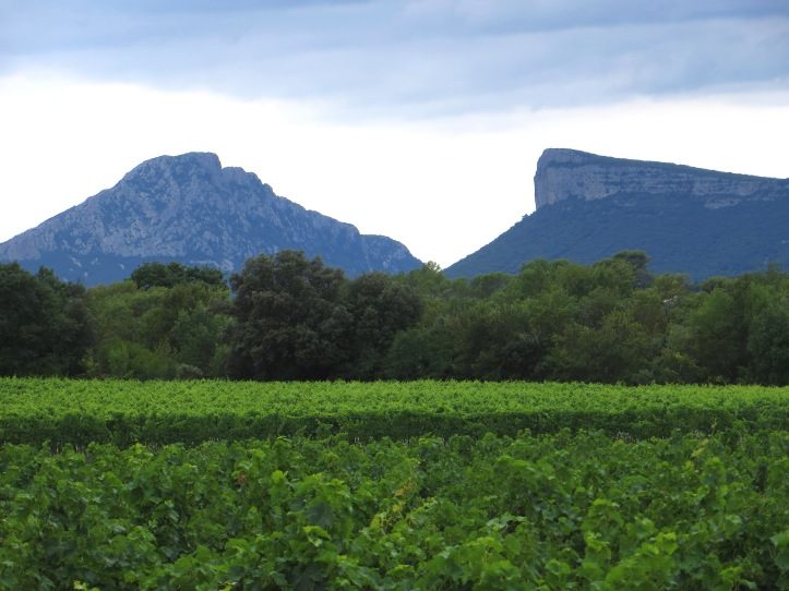 Pic St Loup & the Causse d'Orthus from the church
