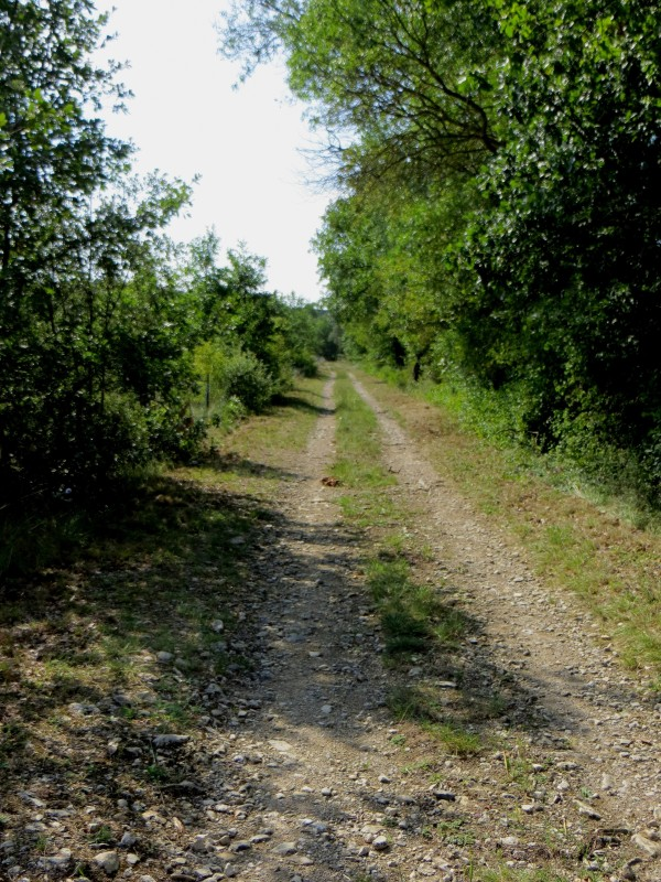 The start of the path to Villesegue