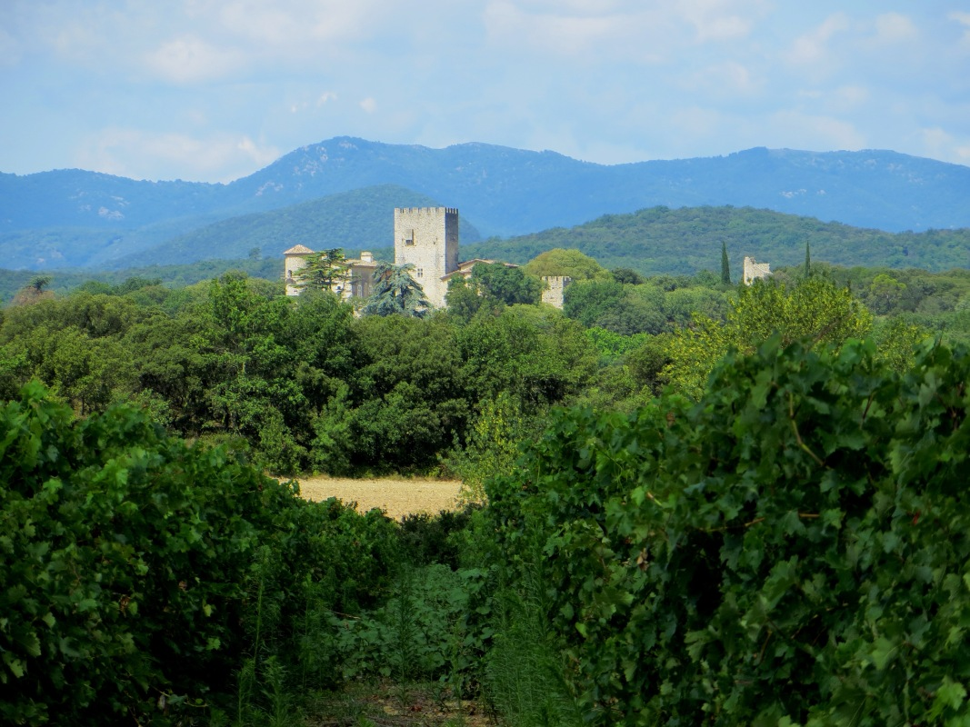 Chateau of Vibrac
