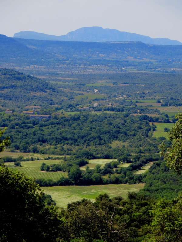 Pic St Loup in the distance