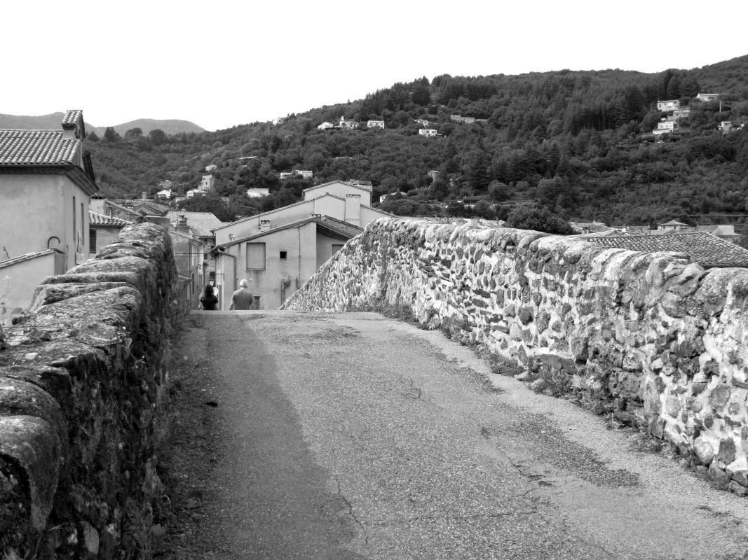 Le Vieux Pont, Le Vigan