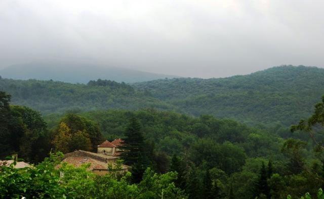A misty day