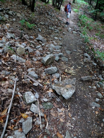 Broken wall on the path
