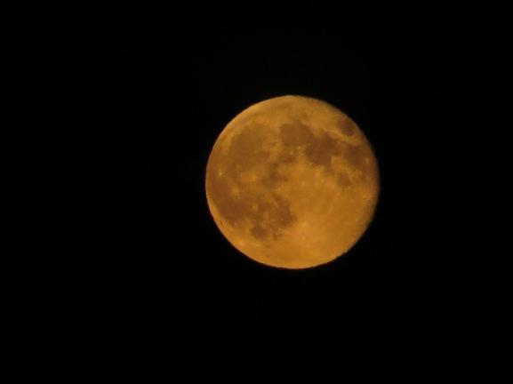 Risen moon