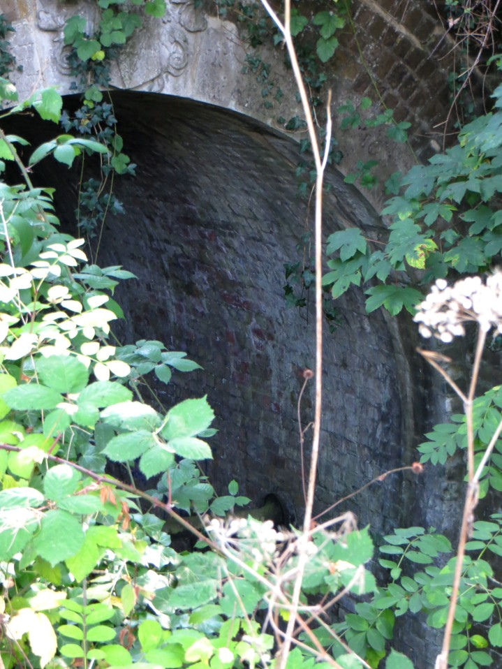 The Clarendon Arch, with engraving obscured by greenery