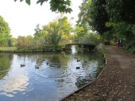 The New River, Enfield, as the path emerges from the Golf Course