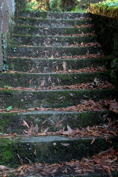 Steps at the Sun Gate