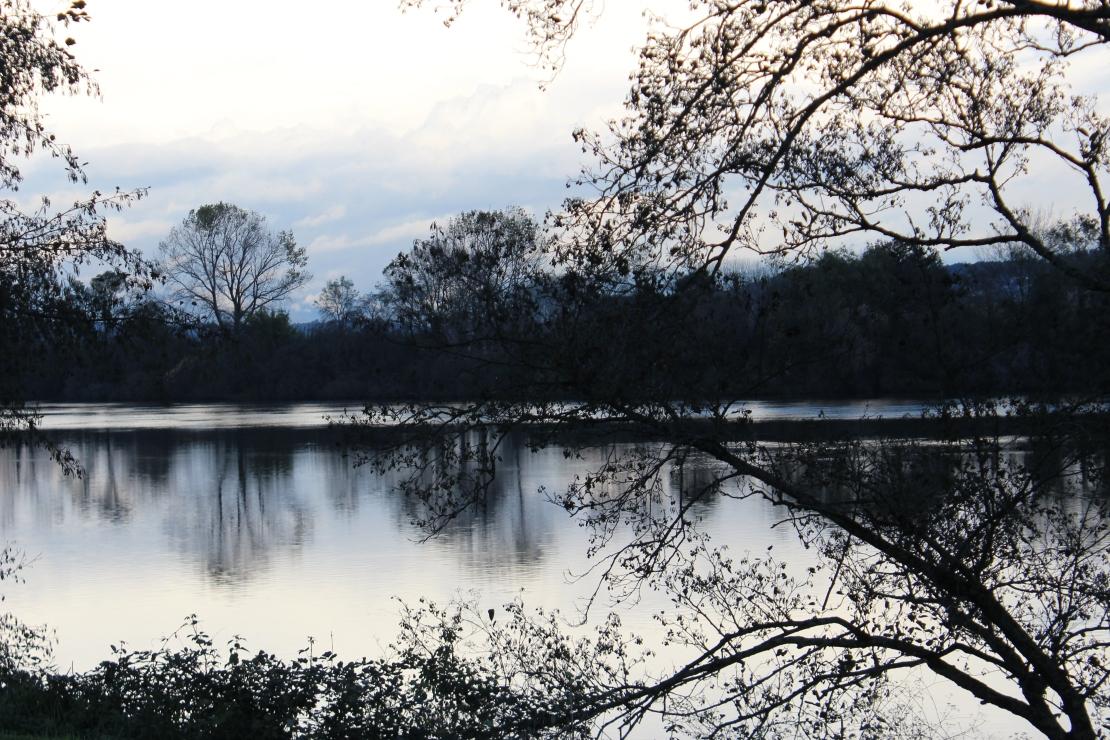 The Minho river