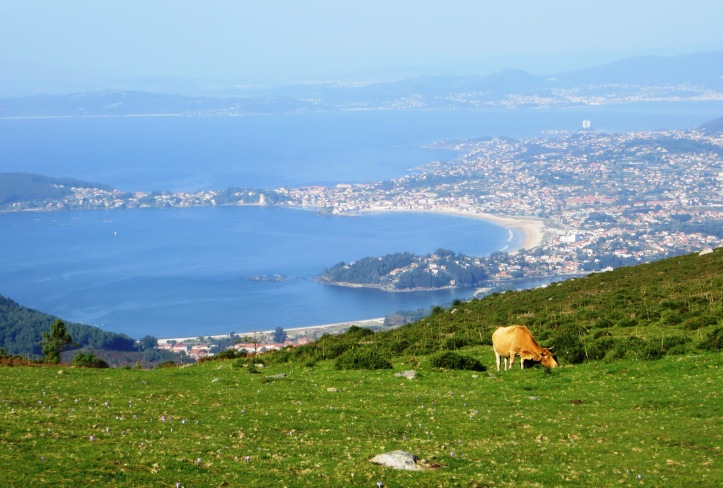 The Bay of Baiona