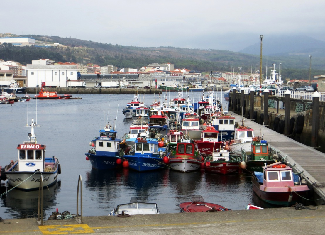 The Port of Ribeira