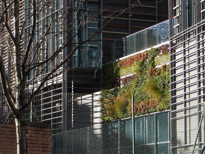Vertical garden in Paris Gardens
