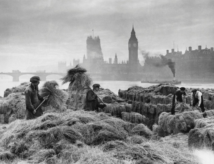 Men unloading esparto grass from barges at a wharf near Lambeth, 1938. (Hulton-Deutsch Collection, Corbis) (www.guardian.com)