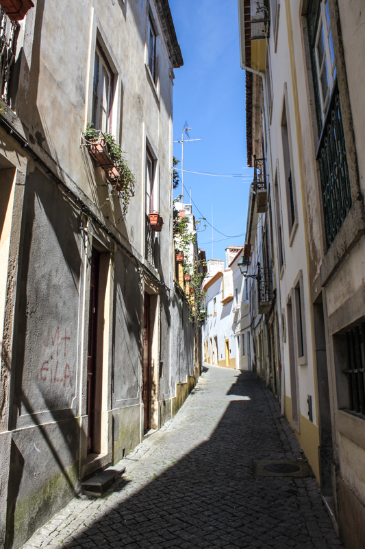 15-2-22 Portugal Day 3 LR-23