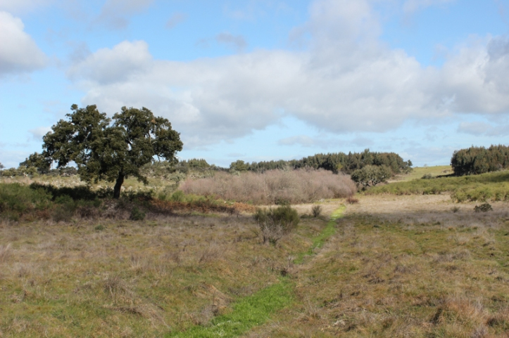 The valley of the Fonte de Laranha