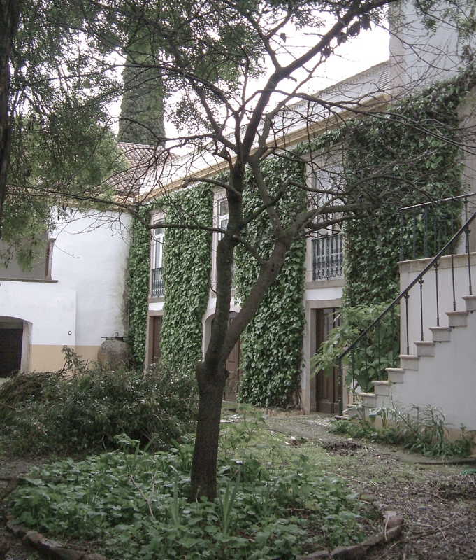 The Palacio Teixeira Guerra in the town, hidden behind gates