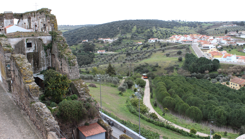 The view from the walls of Avis