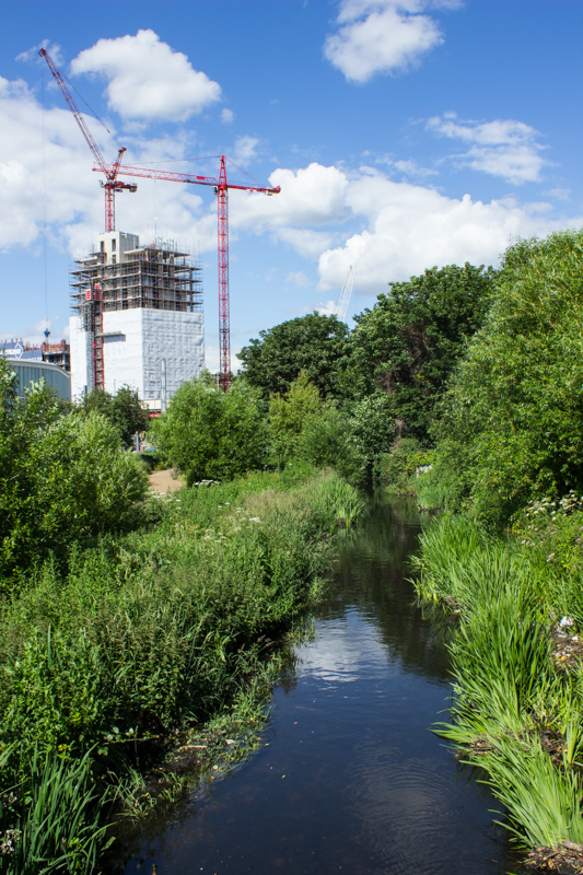The Ravensbourne River just south of the building site
