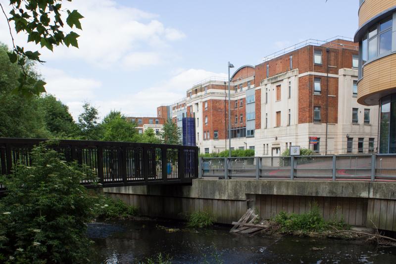 Ravensbourne River in Ladywell Fields - Lewisham Hospital on R