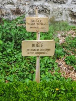 The medicinal gardens at Daoulas Abbey