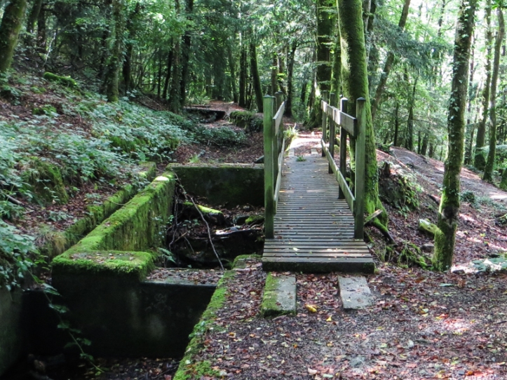The canal to the mine at Huelgoat