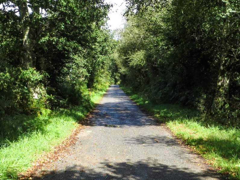 The road down to the Argent River